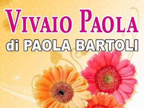 iCicero: Terracina - Vivaio Paola